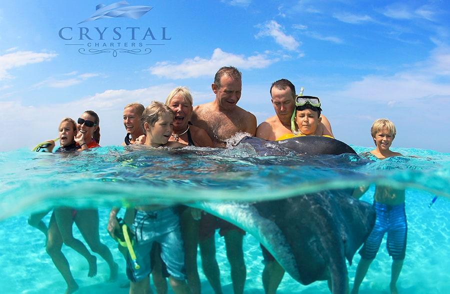 stingrays Cayman Crystal Charters