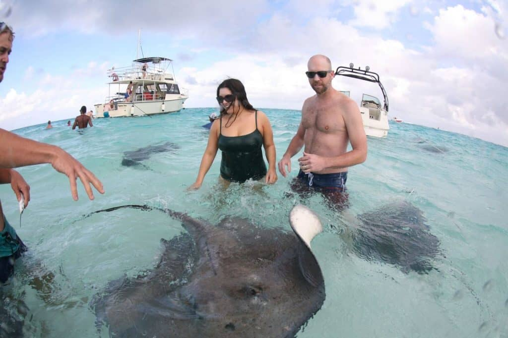 Stingray City Trip