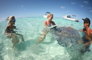 Stingray City Charters