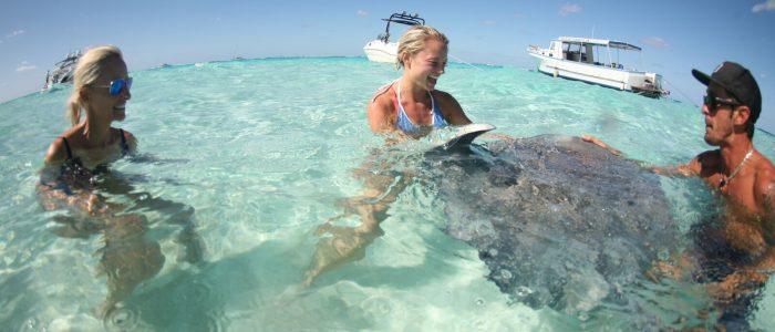 Cayman Islands Stingray City Private Charter