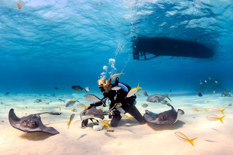 Stingray City Trips - Cayman Islands Boat Charter